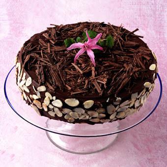 Festtårta med chokladfyllning
