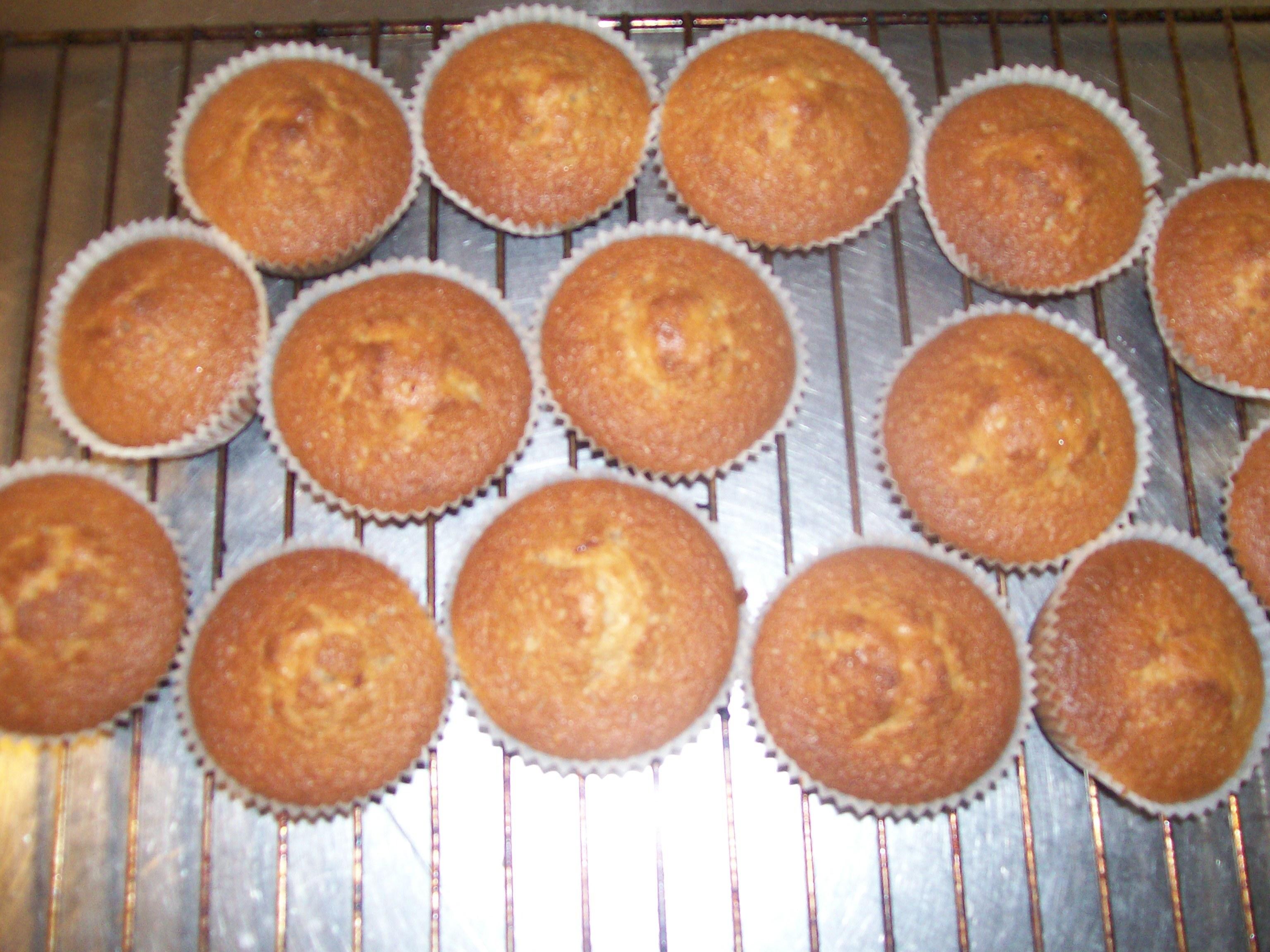 plopp muffins