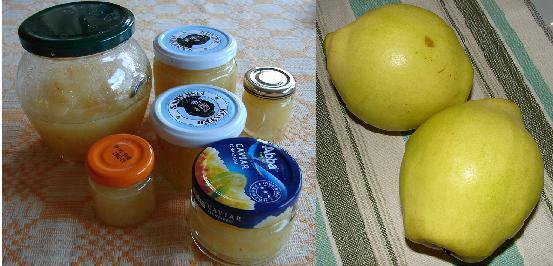 kvitten frukt