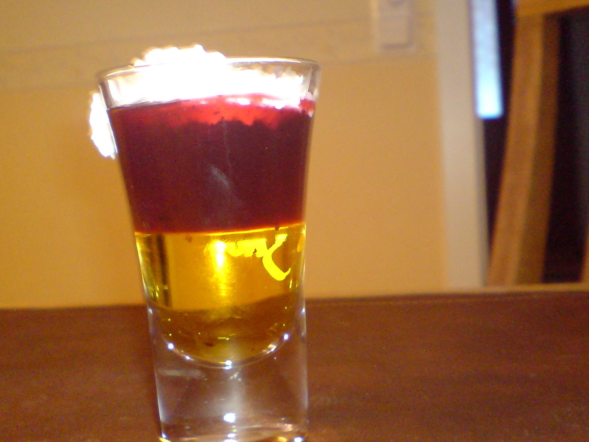 blåbärssoppa shot