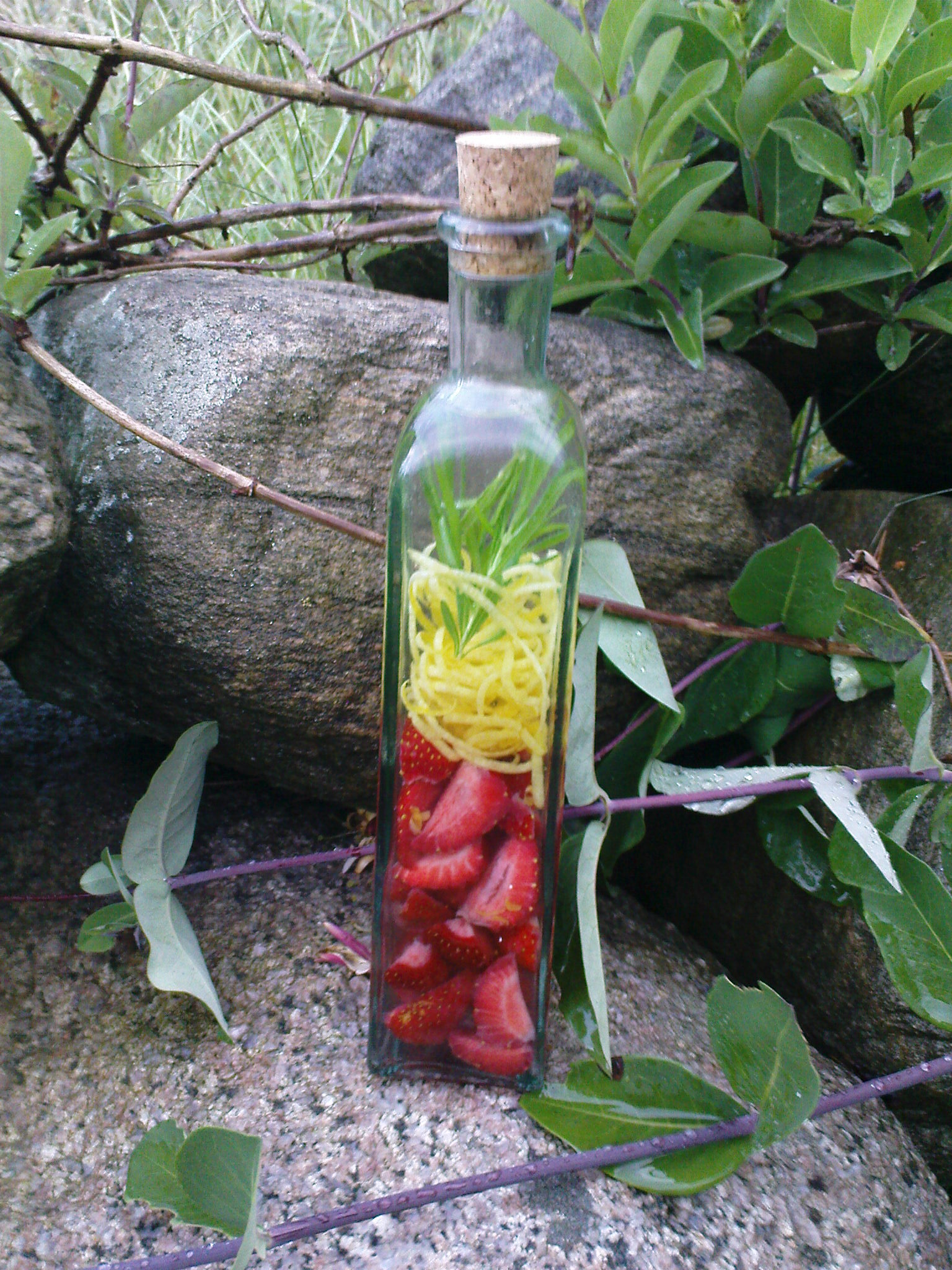tropical vodka