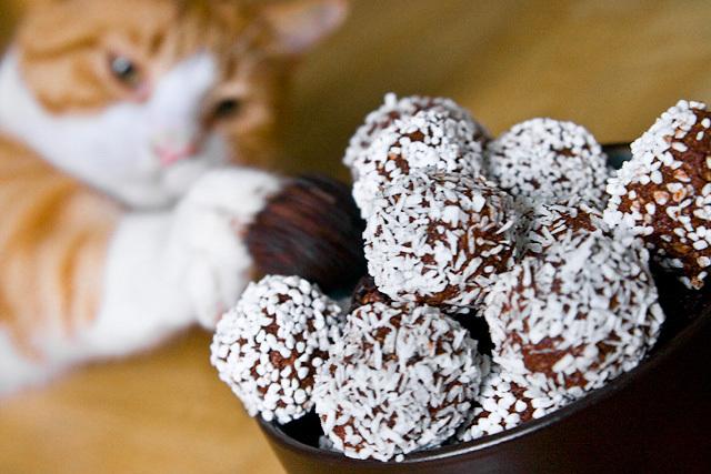 Laktosfria chokladbollar