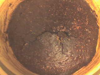 LCHF - Chokladtårta