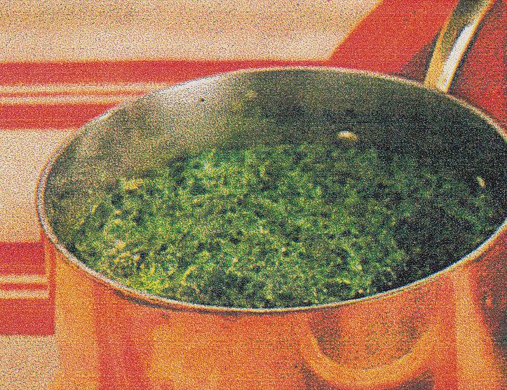 skånsk grönkål