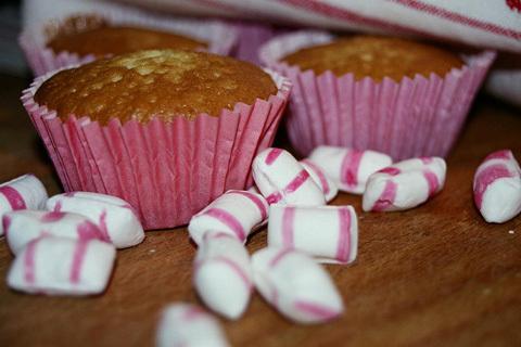 polkagrismuffins