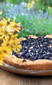 blåbärskaka med lite socker
