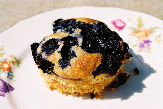 Muffins med blå..