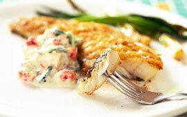 Grillad fisk med kräftsatsiki