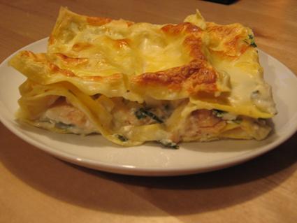 lax lasagne