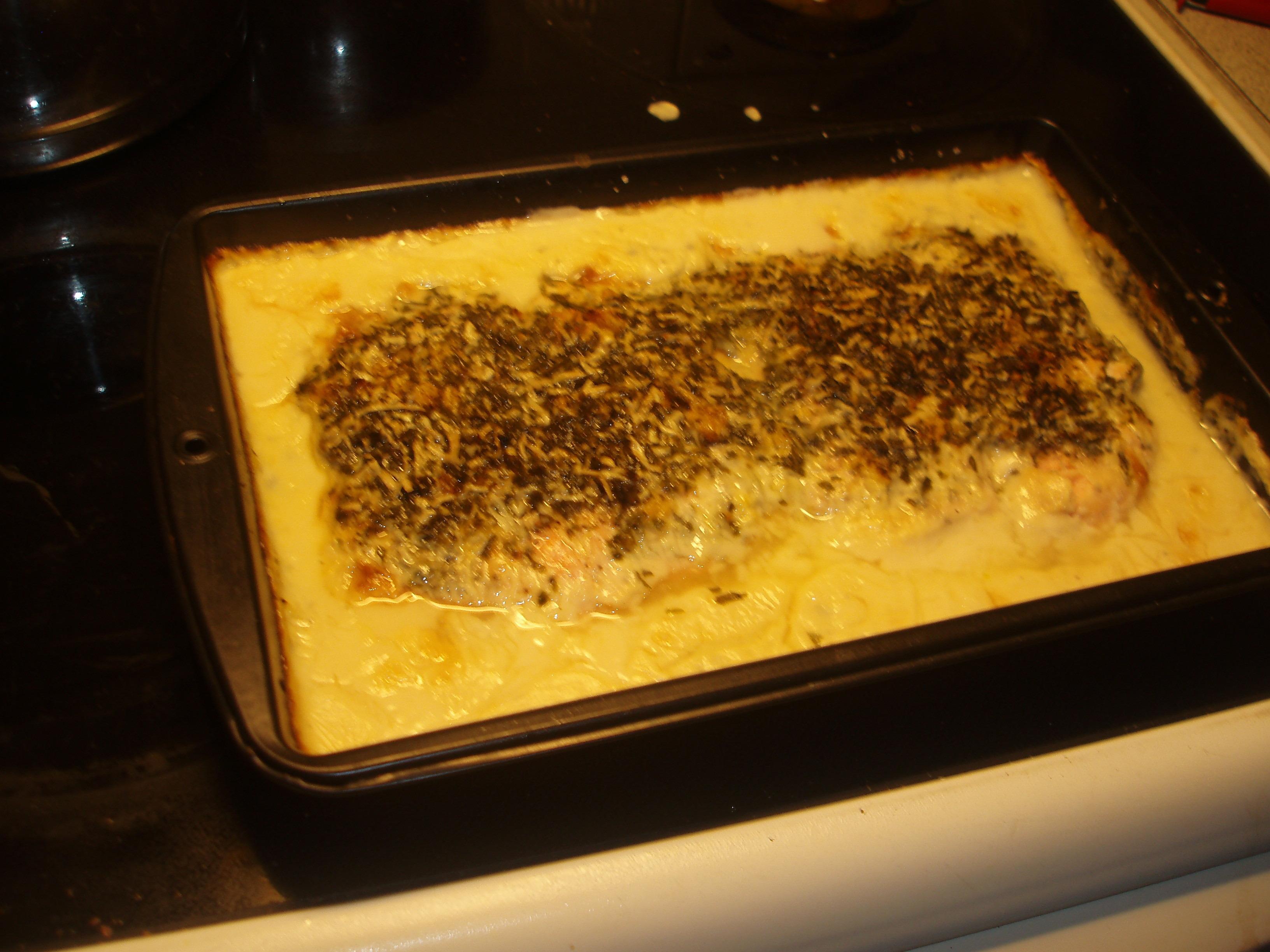 Gratinerad lax med ost och persilja