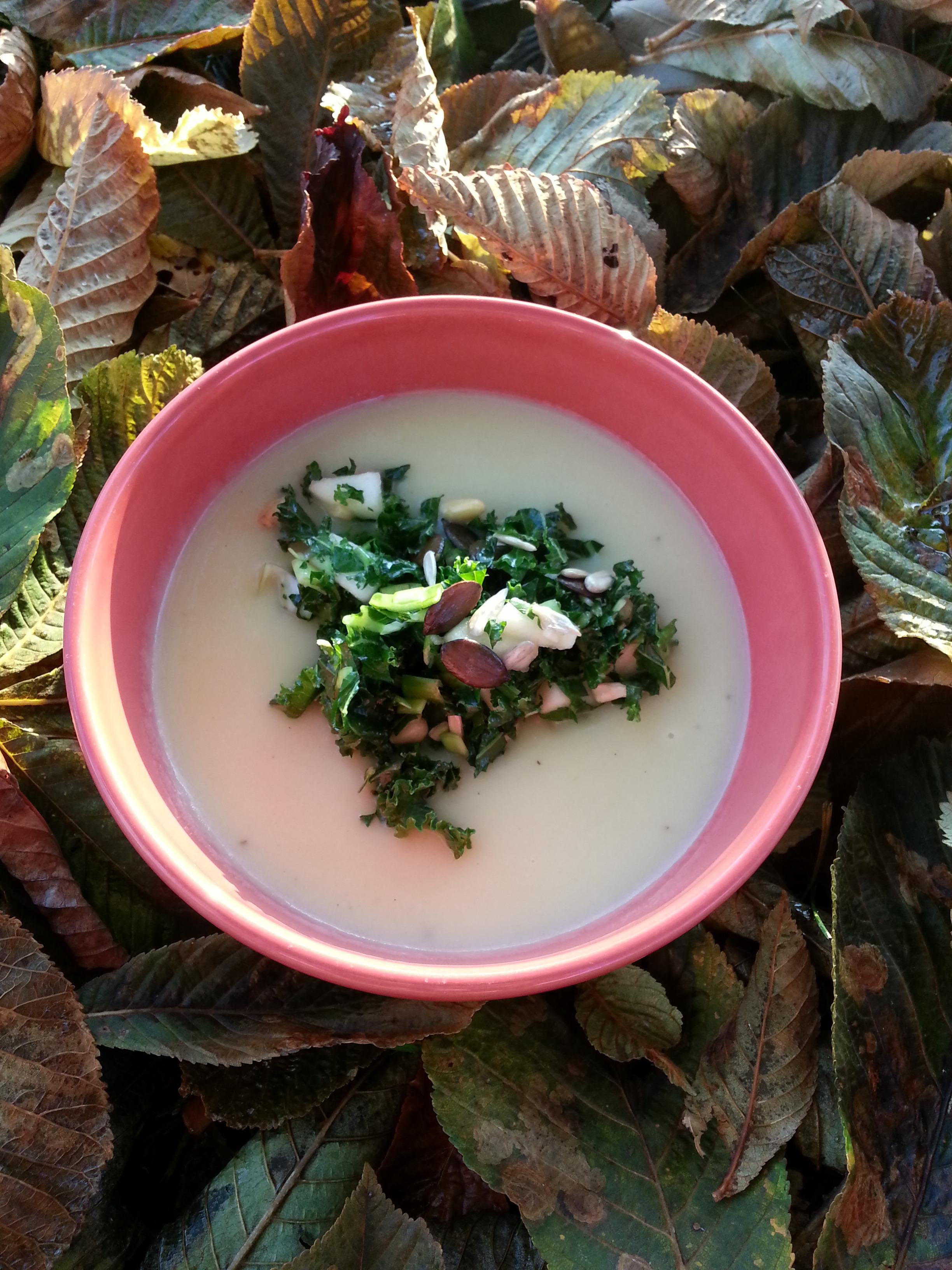 Grönkålssallad med frön, nötter, och limedressing