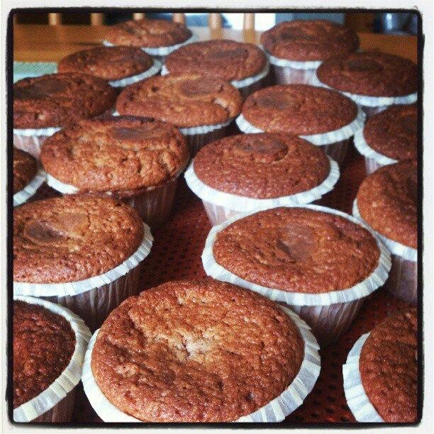 choklad chip muffins