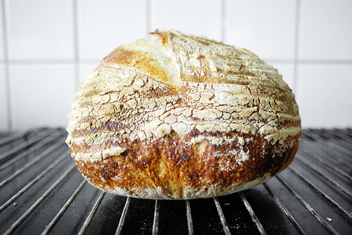 snabbt bröd med jäst utan jäsning