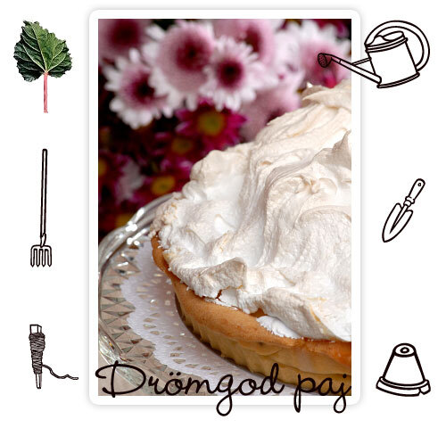 riktigt god vaniljsås