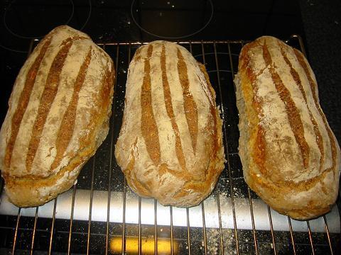 grovt rågmjöl kruskakli bröd