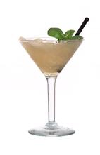 drink martini med fläder