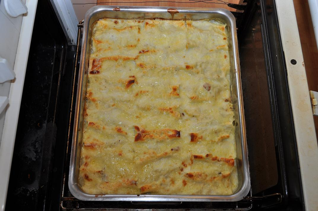 cannelloni kyckling