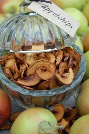 torka äpplen varmluftsugn