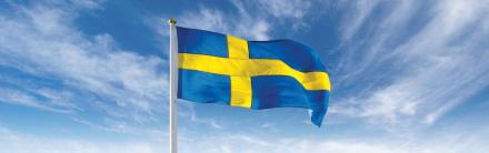 Formenta Svensk Flagga 450x281
