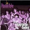 Prairie Cats - 'til the daytime fades - CD NY - FRI FRAKT