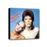 David Bowie Canvas tavla