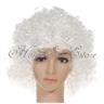 SKU00102Party Disco Rainbow Afro Clown Hair Football Fan Adult Child Curly Wig