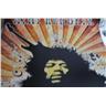 Jimi Hendrix reproduktion av tidig poster affisch