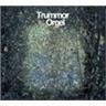 LP TRUMMOR & ORGEL -VISIONS vinyl