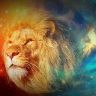 Kanvas tavla, lion, 60x100 cm