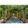Fototapet Garden of Athens - en fototapet som skapar skillnaden!