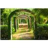 Fototapet Pergola Garden - en fotorealistisk tapet till marknads bästa pris!