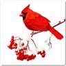 Kardinalfågel kakeldekor 6-pack Kakel Dekor Kök Badrum Fågel