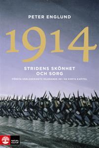 1914 Stridens skönhet och sorg : första världskrigets inledande år i 68 korta kapitel