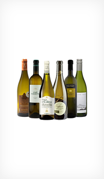 Vinprovningspaket - sauvignon blanc