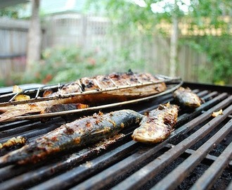 Recettes de denti barbecue mytaste - Accompagnement gambas grillees ...