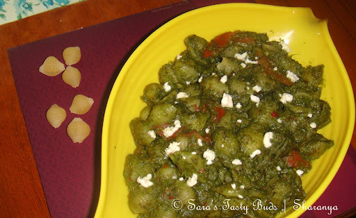 Shell Pasta in Spinach Pesto Sauce