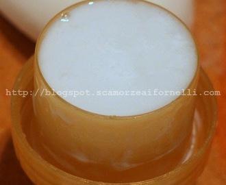 Ricette di sapone mytaste - Sapone liquido fatto in casa ...