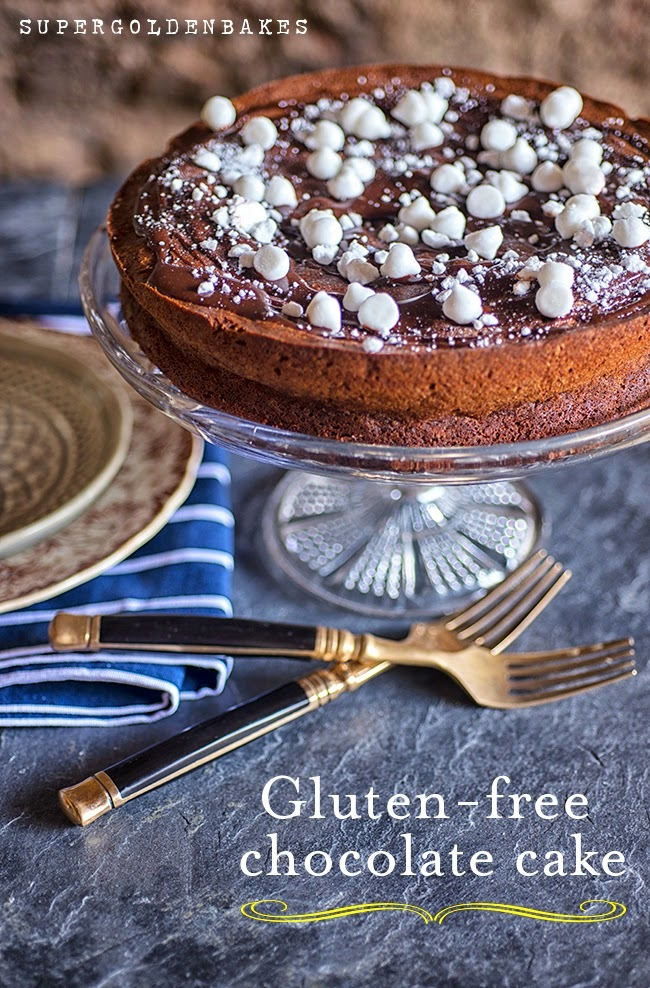 Ultimate gluten-free chocolate cake with fudge sauce