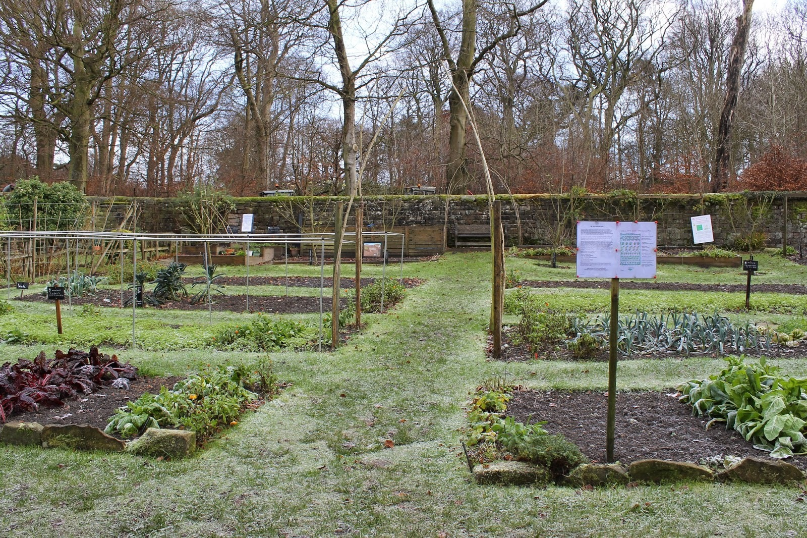 Kitchen Garden Notes – Longshaw
