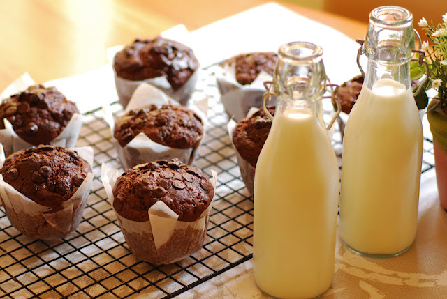 Muffins de chocolate y pepitas de chocolate.