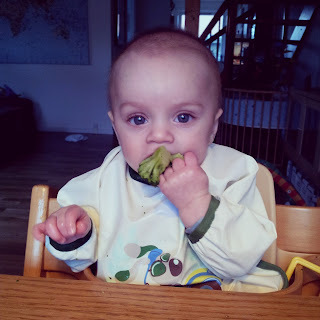 Baby-led weaning.