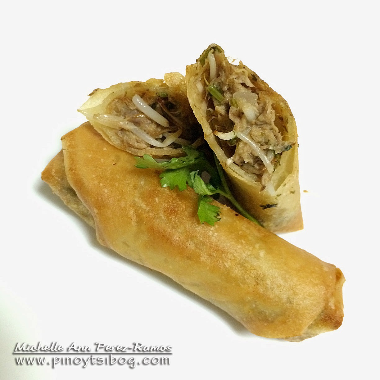 Fried Tuna Spring Roll