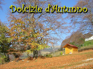 Contest Dolcizie d' Autunno
