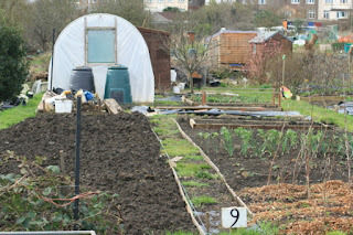 February on the Allotment - 2016