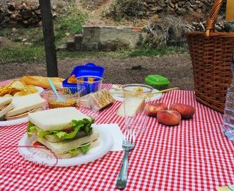 Recetas de comida para picnic mytaste - Comida para llevar de picnic ...