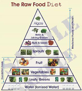Raw Food Diet Program Strategy