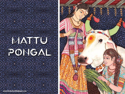 Pongal: Celebration of Life