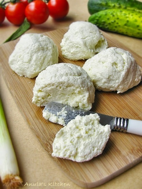 polish white cheese twarog twarozek