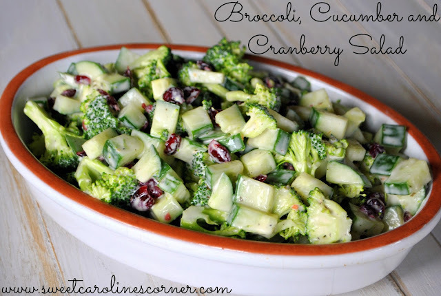 Broccoli, Cucumber and Cranberry Salad (Salada de Brócolis, Pepino & Cranberry)