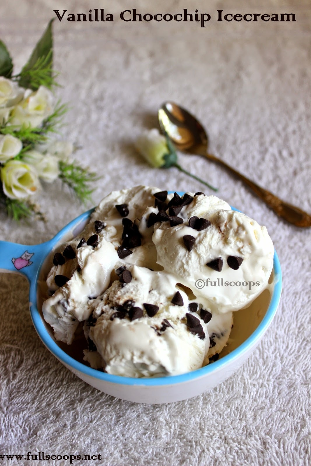 Vanilla Chocochip Ice cream - A Guest Post by Beulah